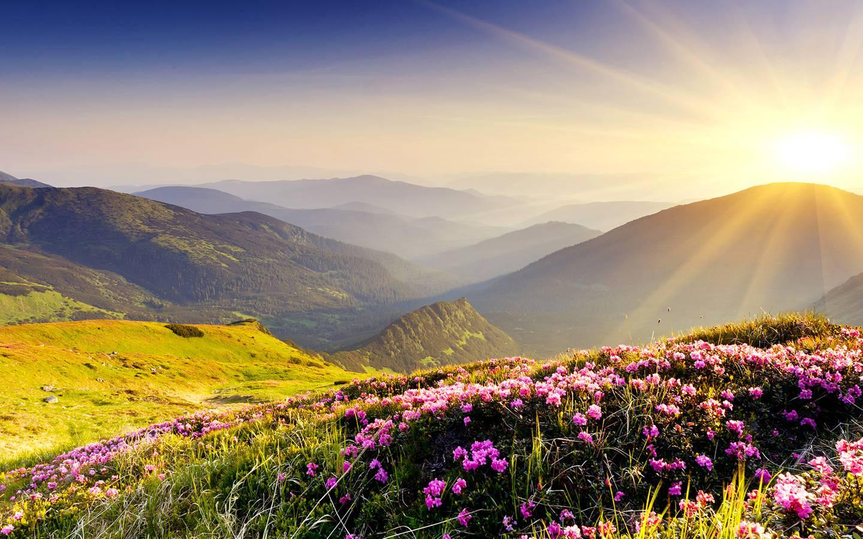 298 paysage nature auvergne